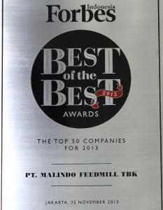BEST OF THE BEST AWARD 2013